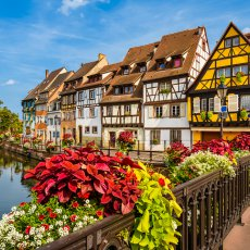alsace-image-7